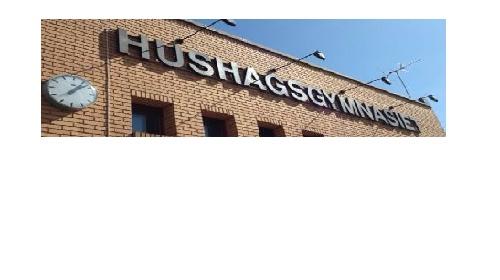 Hushagsgymnasiet Borlänge